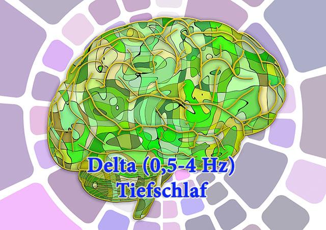 delta-hirnfrequenz