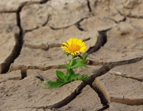 Was sind die 3 Dinge, die dich daran hindern, deine Lebensaufgabe zu erkennen und zu finden?