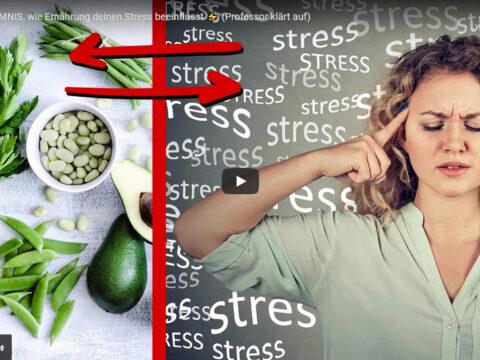 Stress und Ernährung