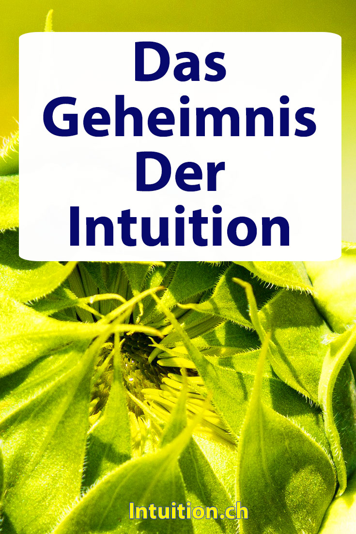 Intuition-Geheimnis