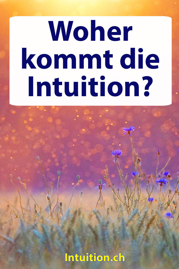 Intuition-woher